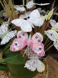 Collectie-voorjaar vlinder